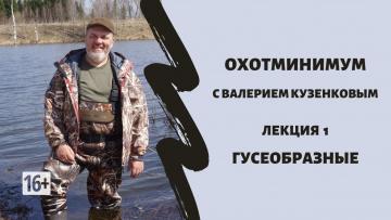 Охотминимум с Валерием Кузенковым. Лекция 1. Гусеобразные